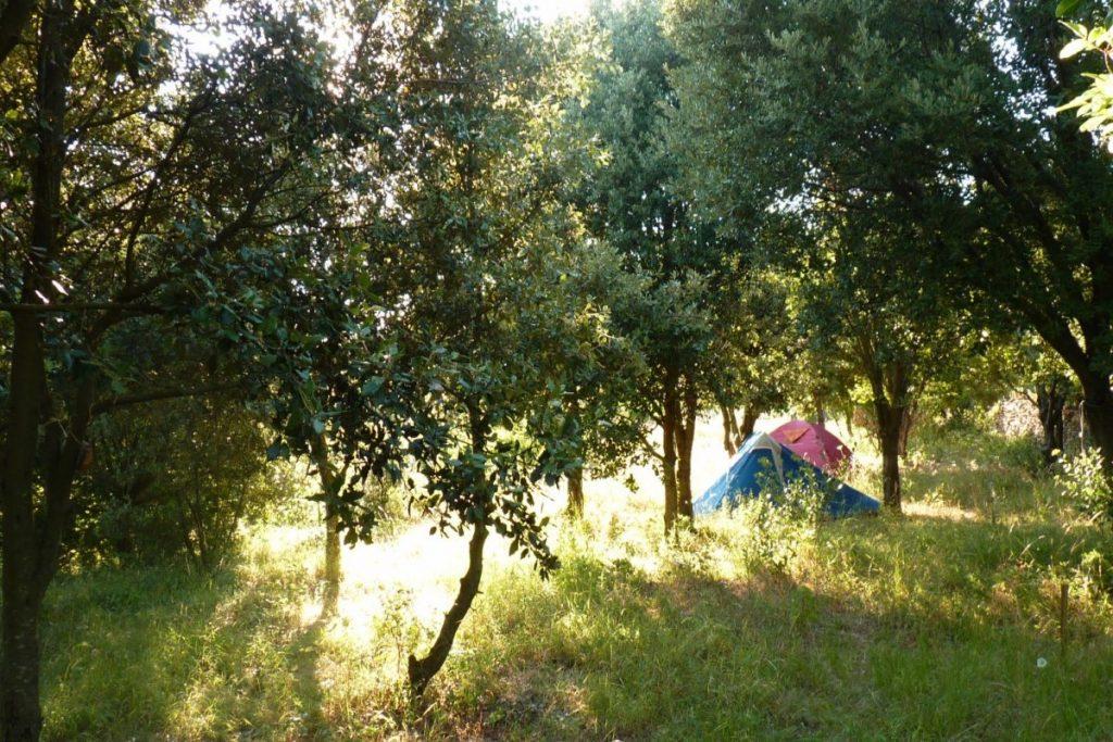 aire de camping 2 [1600x1200]