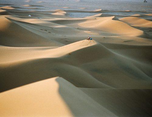 Retraite de Qi Gong dans le Sahara Marocain, du 1 au 9 février 2020